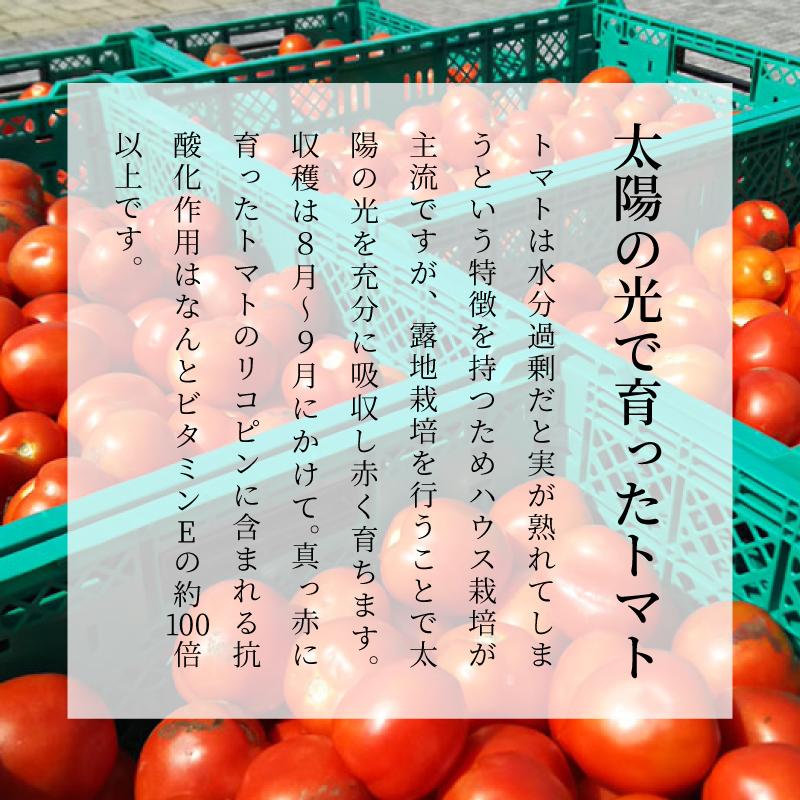 トマトジュース 通販 ダイセン創農 こだわり