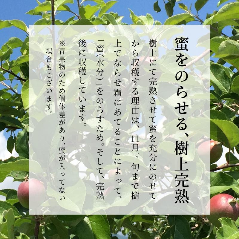 長野県産りんご むぎわらぼうし 通販 お取り寄せ 産地直送 樹上完熟