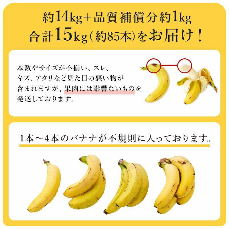 定期購入 定期便 訳あり甘熟王バナナ
