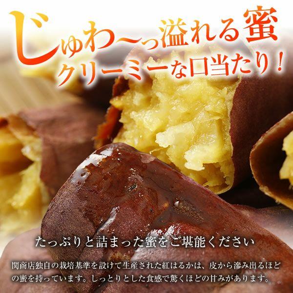 冷凍焼き芋 関商店 溢れる蜜
