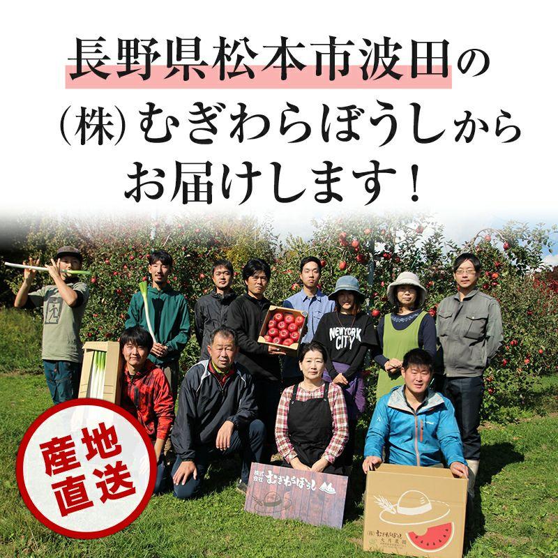 長野県産サンふじりんご 通販 お取り寄せ むぎわらぼうし