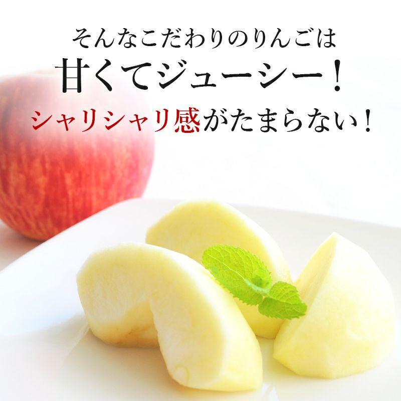 長野県産サンふじりんご 訳アリ 通販 お取り寄せ むぎわらぼうし